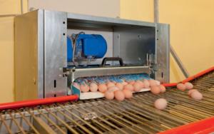 EggTrax
