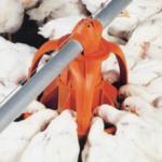UniGrow Broiler Feeding Pan