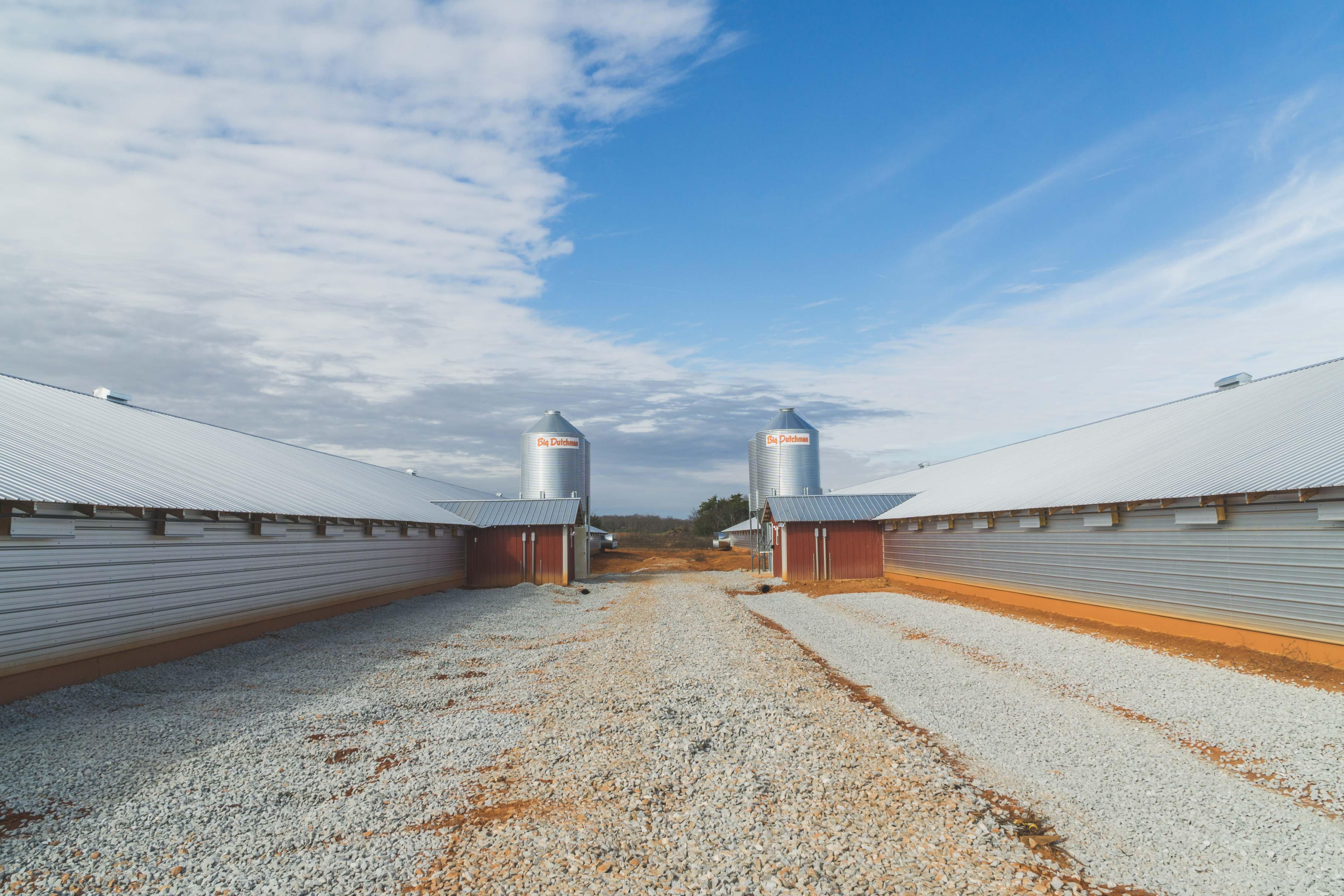 Feed Bins & Conveying | Feed Storage Bins | Big Dutchman USA
